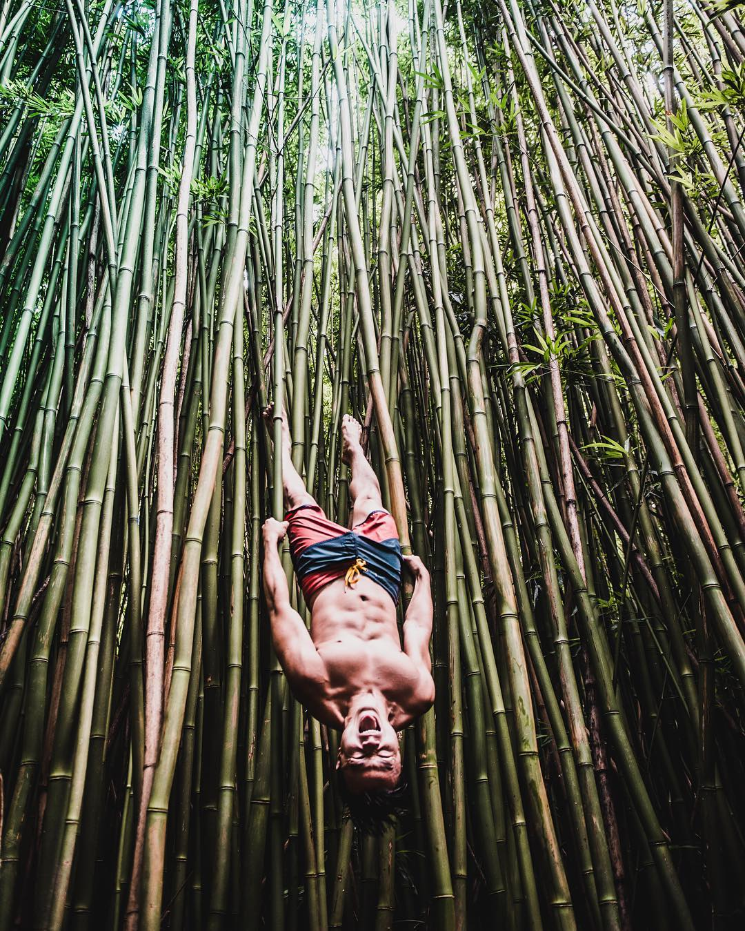 Just hanging out in the Bamboo Forest on the Roadhellip