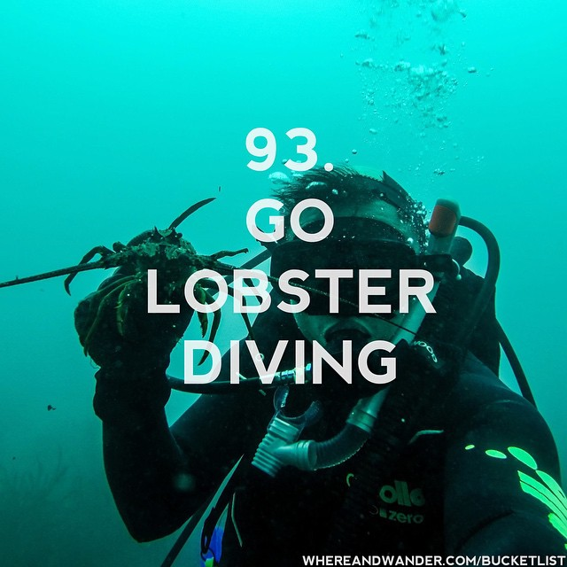#93 on the #bucketlist. #lobster #diving is fun and delicious.…
