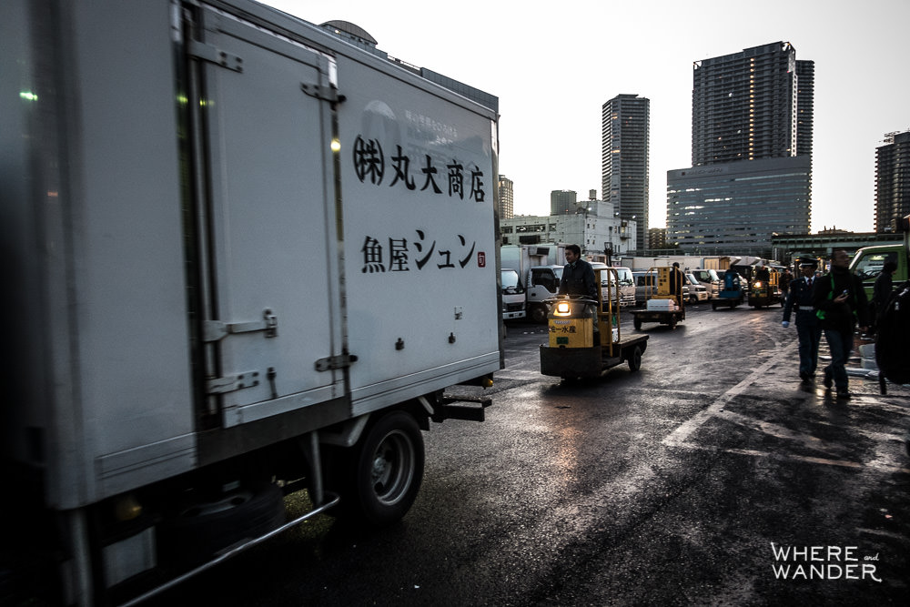 Forklifts-Carts-Tsukiji-Fish-Market-Morning-Traffic