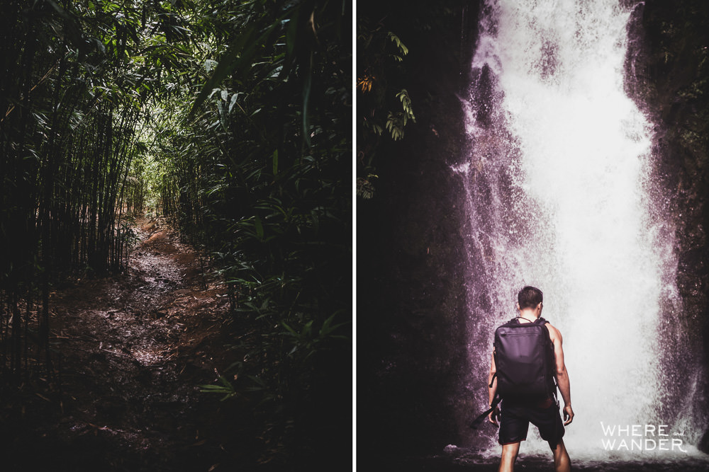 Hiking To Waterfall In The Bamboo Forest On The Road To Hana
