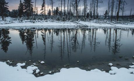 Yellowstone Snow In June