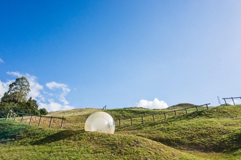 OGO Downhill Inflatable Ball H2OGO Rotorua Must Do New Zealand
