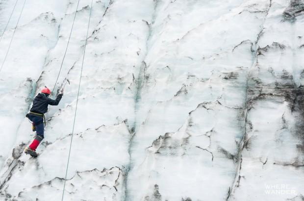 Fox-Glacier-Where-Ice-Climbing-New-Zealand-Must-Do-25
