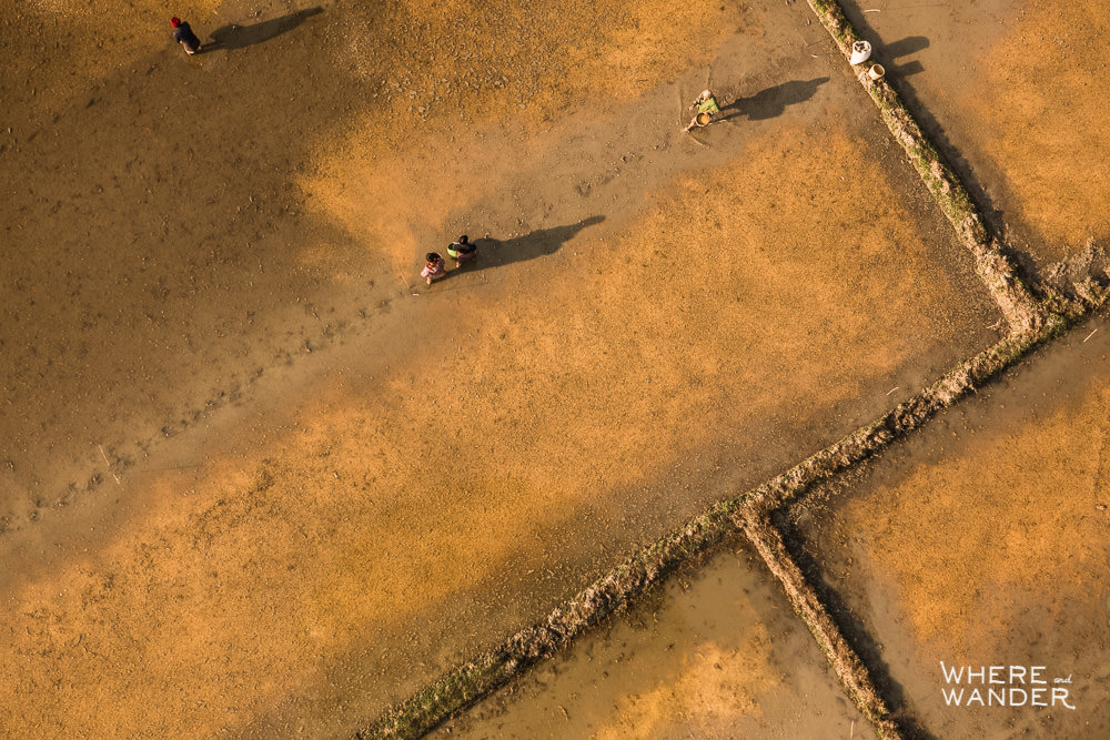 Epic Aerial Drone Photography Of Farmers In Field In Myanmar