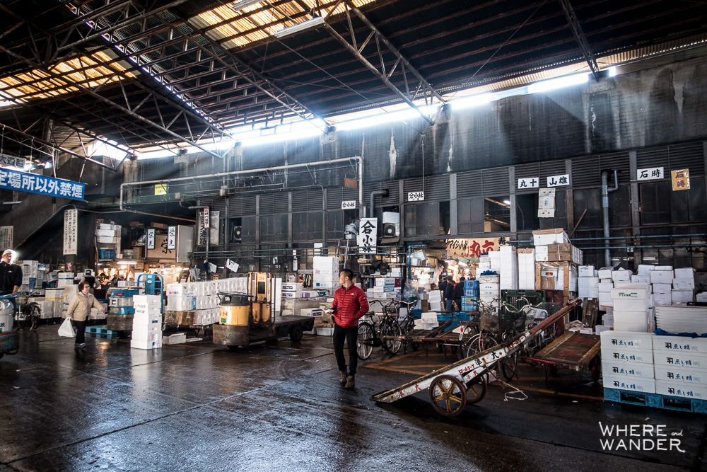 Kien-Lam-At-Tsukiji-Fish-Market