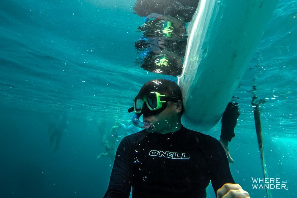 Overcrowding-Whale-Sharks-Tourist-Kayak-Oslob