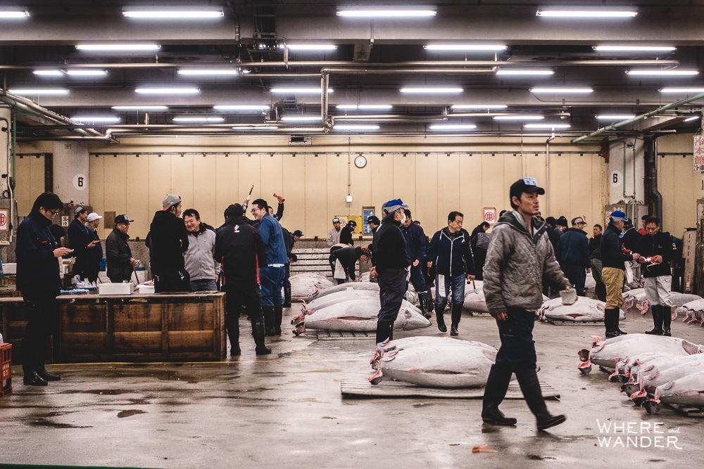 Tsukiji-Tuna-Auction-Tokyo-Must-Do