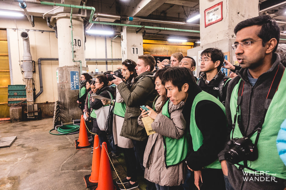 Tourists Watching The Tsukiji Fish Market Auction