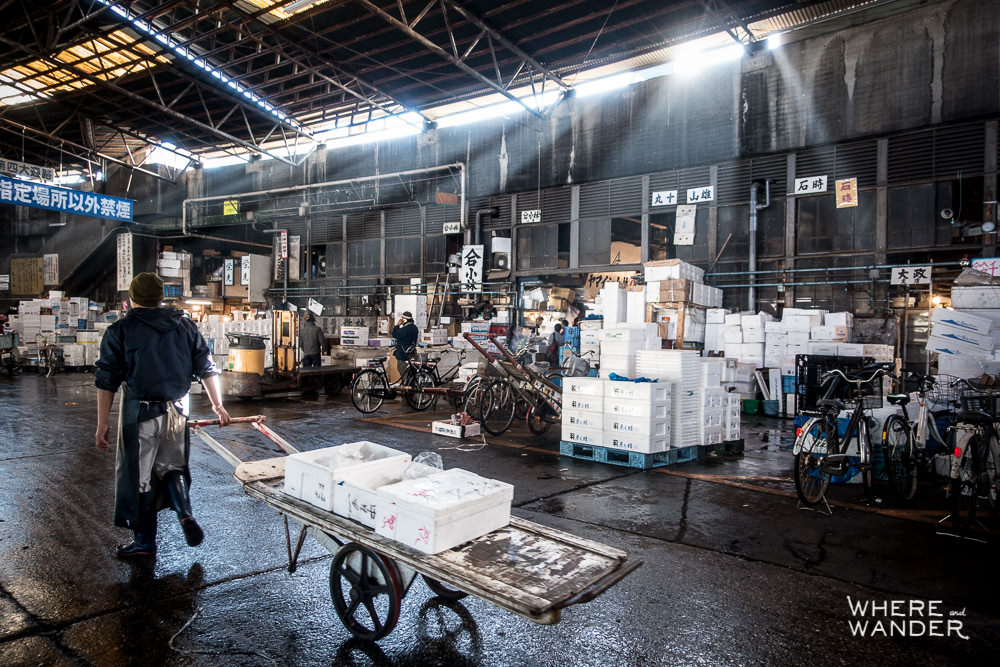 Tsukiji-Wholesale-Market-Open-To-Public