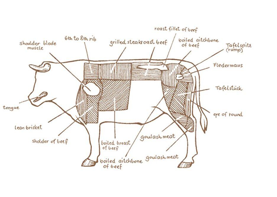 Plachutta Meat Cuts Diagram 2020